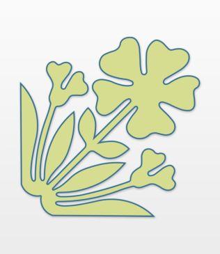 Studio Hawaiian-Hula Flower by Stacy Michell